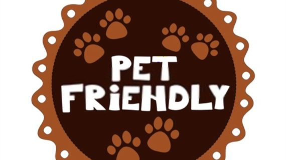How to Make Your House Pet Friendly?